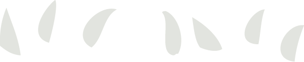 part-4-icon