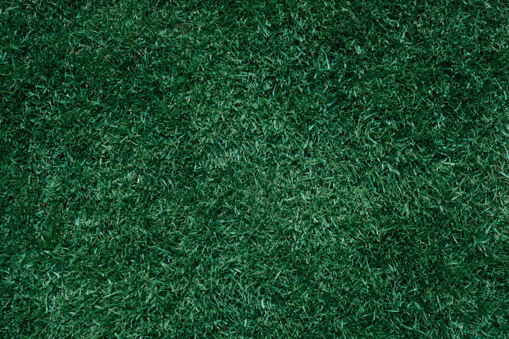 Lush green lawn in a trendy color look, sports turf, soccer turf, meadow